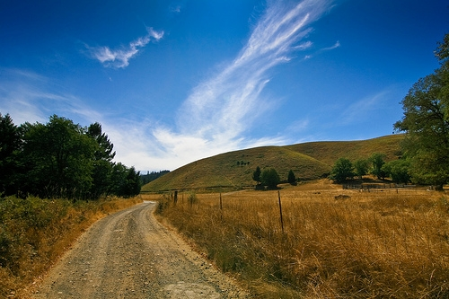 Dirt Road, Ettersburg, California