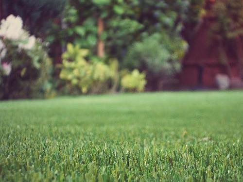Artificial Grass in Kent